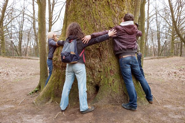 https://www.insiemesipuo.eu/wp-content/uploads/2020/11/group-of-friends-hugging-giant-tree-trunk-and-holding-hands-during-hiking-excursion-600x400.jpg